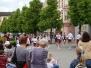12.5.2009 Předvolební mítink Benešov